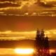 Sunset Radiance